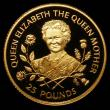 London Coins : A167 : Lot 268 : Guernsey £25 Gold 1995 Queen Elizabeth the Queen Mother 95th Birthday nFDC with a few small fl...